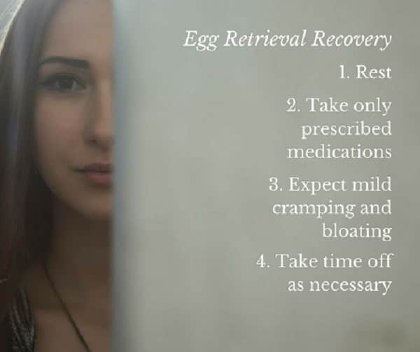 Understand egg retrieval process, preparation, and recovery